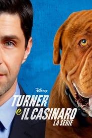 Poster Turner e il casinaro - La serie 2021