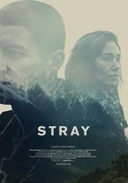 Stray (2018) CDA Online Cały Film Zalukaj