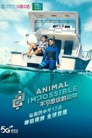 Animal Impossible - Season 1