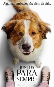 Poster de A Dog's Journey (2019)