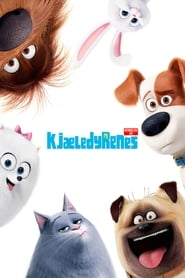 Kjæledyrenes hemmelige liv – The Secret Life of Pets (2016)