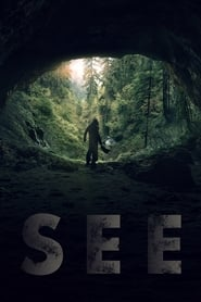 See en streaming VF HD (2019)