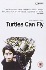 Poster for Turtles Can Fly