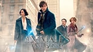 EUROPESE OMROEP | Fantastic Beasts and Where to Find Them
