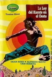 Robin Hood, Arrows, Beans and Karate (1973)