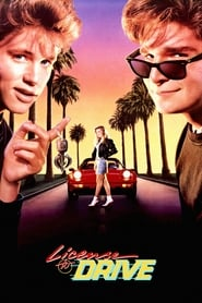 Image License to Drive (1988)