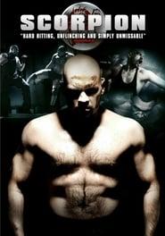 Poster Scorpion 2007