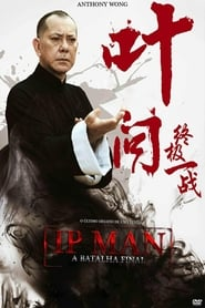 Ip Man: A Batalha Final (2013) Dublado Online