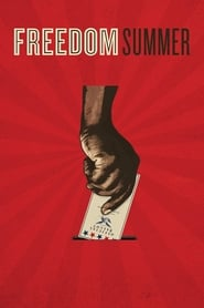 'Freedom Summer (2014)