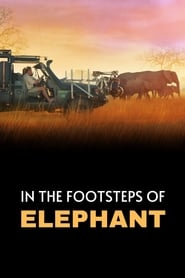 In the Footsteps of Elephant (2020) poster