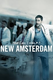 New Amsterdam 1 Staffel