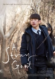 Watch Movie A Stray Goat (2017)