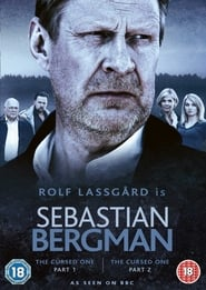 Sebastian Bergman 2010
