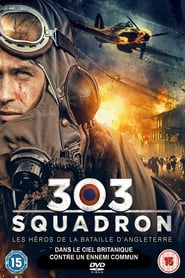 303 Squadron Streamcomplet