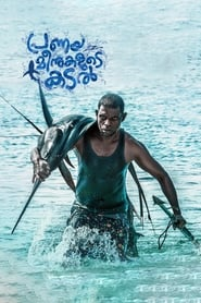 Pranaya Meenukalude Kadal (2019) HDRip Malayalam Full Movie Online