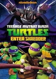Teenage Mutant Ninja Turtles - Enter Shredder