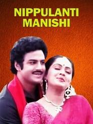 Nippulanti Manishi 1986