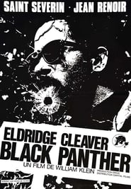 Eldridge Cleaver, Black Panther (1970)