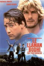 Le llaman Bodhi / Punto limite (Point Break)