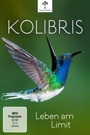 Kolibris: Leben am Limit 2012
