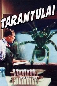 Regarder Tarantula !