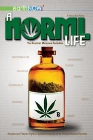 A Norml Life 2011