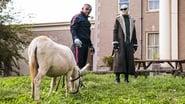 Doom Patrol - Season 1 Episode 2 : Donkey Patrol