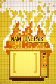 Nam June Paik: Edited for Television 1970