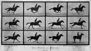 Sallie Gardner at a Gallop (1878)