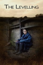 Watch The Levelling on FMovies Online