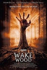 Wake Wood [2011]