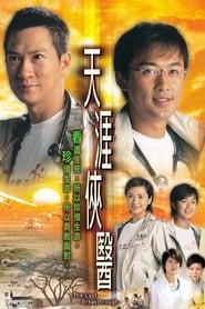天涯俠醫 2004