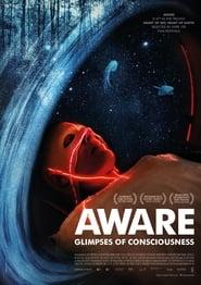 Aware – Glimpses of Consciousness