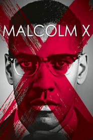 Poster for Malcolm X