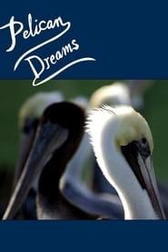 Pelican Dreams 2014
