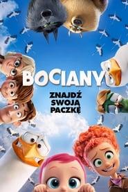 Bociany – cda