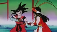 Dragon Ball Season 1 Episode 153 : The End, The Beginning