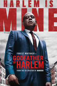 Godfather of Harlem: 1 Staffel