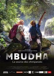 Mbudha - La source des chimpanzées 2019