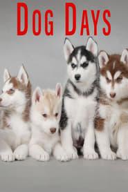 Dog Days 2016
