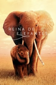 Reina de elefantes (2019) | The Elephant Queen