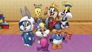 Les Bébés Looney Tunes en streaming