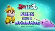 Sea Patrol: Pups Save a Narwhal