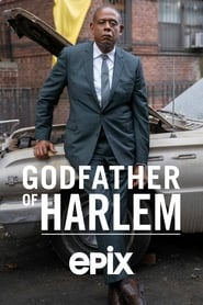 Image Godfather of Harlem