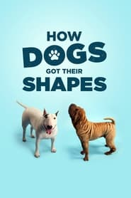 How Dogs Got Their Shapes (2016)