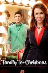 Family for Christmas (2015)