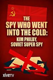 Spionen der gik ind i kulden 2013