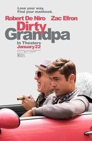 Mi abuelo es un peligro (Dirty Grandpa) (2016)