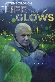 Watch Attenborough's Life That Glows on Showbox Online