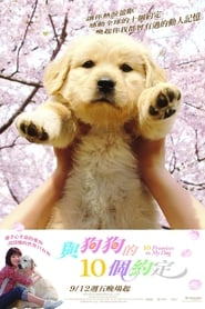 10 Promises to My Dog (2008) WEB-HD 480p, 720p